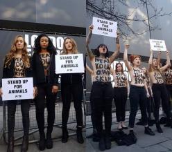 모피 반대 그룹, 런던패션위크 디자이너와 충돌, 그 이유는?